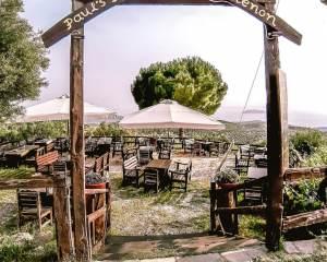Pauls Tavern Parthenonas village Sithonia