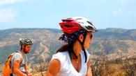 Carduus bike