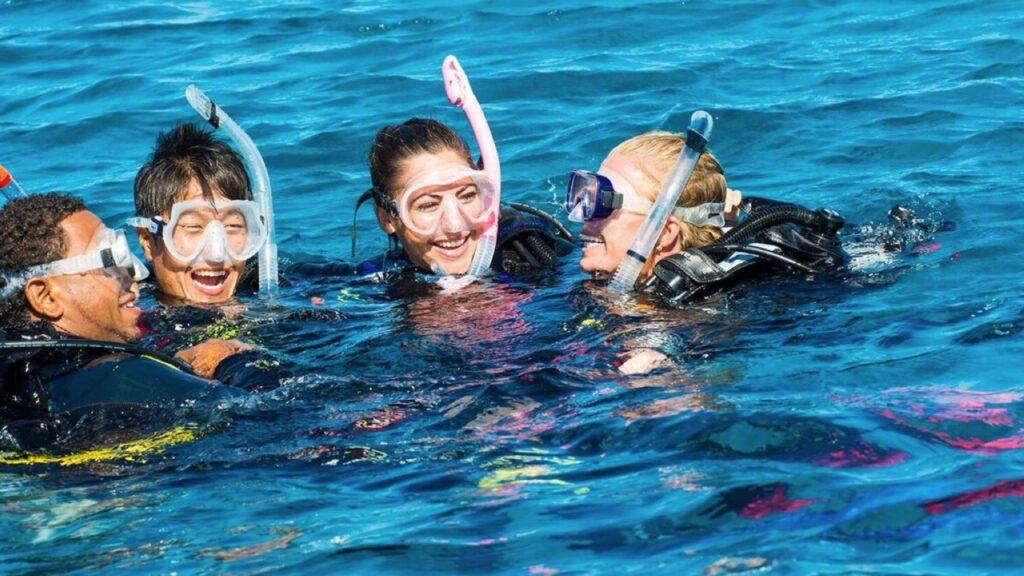 ocean diving centre discover scuba diving