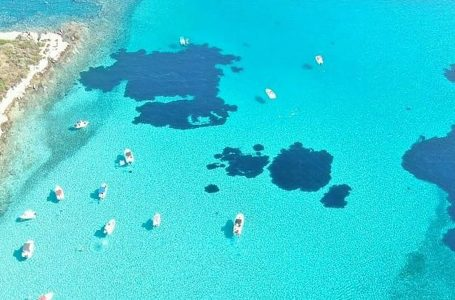 Blue Lagoon Boat Rental