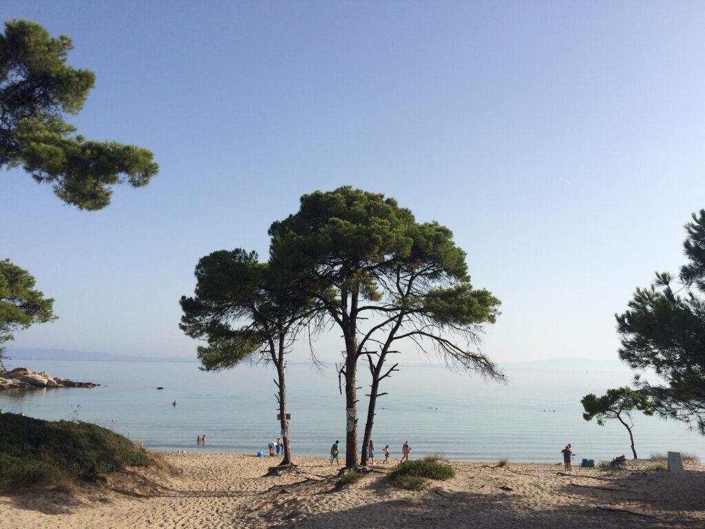 Karidi beach Vouvoutou Sithonias Halkidiki Greece